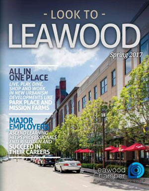View Spring 2017 issue